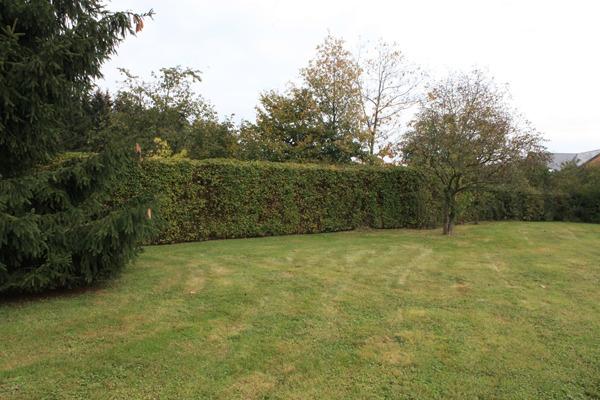 D couvrez les services d id es jardin votre expert en - Agent d entretien des parcs et jardins ...